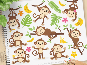 monkeys vector clipart